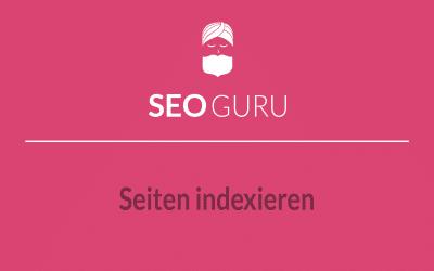 SEO Guru Tipp: Seiten sofort von Google indexieren lassen